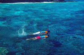 งมเข็มในมหาสมุทร